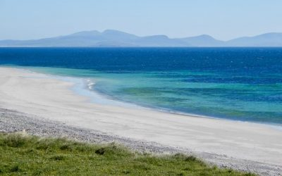 Daisy Month on Askernish